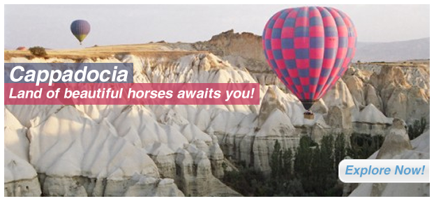 Cappadocia: Land of beautiful horses awaits you!!